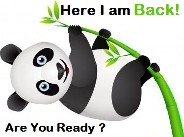 Google Panda Refresh is On the Way